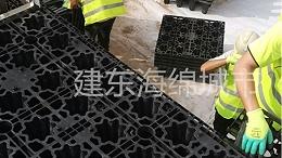 武汉国博公园景观水系海绵改造工程